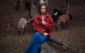 Картинка на природе, козы, Илья Баранов, Алина Баранова