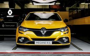 Картинка Renault, вид спереди, хэтчбек, 2018, Trophy, Megane RS