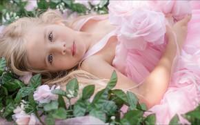 Картинка pink, princess, Girl, teen girl