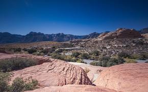 Картинка Калифорния, США, Mojave Desert