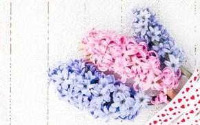 Картинка цветы, букет, розовые, blue, pink, flowers, гиацинты, hyacinths