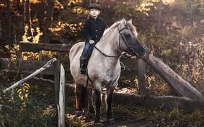 Картинка природа, конь, мальчик