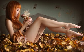 Картинка осень, листья, рыженькая, Saju, красивые ножки