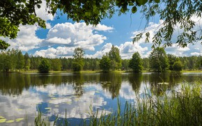 Картинка forest, water, lake, camp