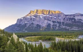 Картинка лес, пейзаж, горы, природа, река, красота