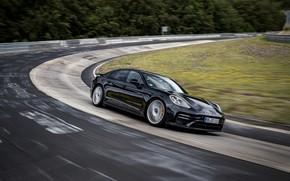 Картинка чёрный, Porsche, поворот, Panamera, Nürburgring, 2020, Nordschleife, предсерийный