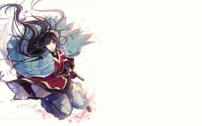 Картинка взгляд, меч, катана, лепестки, парень, Touken Ranbu, Танец Мечей, Izumi no Kami Kanesada