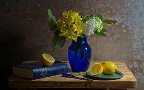 Картинка цветы, лимон, книга, ваза