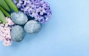 Картинка цветы, праздник, яйца, пасха, геоцинты