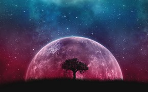 Картинка Fantasy, Tree, Planet, Stars sky