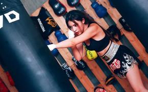 Картинка девушка, лицо, поза, спорт, бокс, тренировка