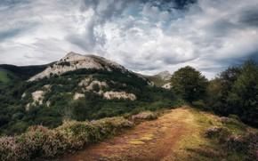 Картинка дорога, небо, горы
