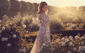 Картинка цветы, поза, модель, Девушка, платье, Алина Мур