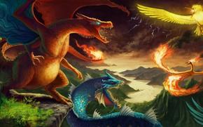 Картинка пейзаж, Покемон, игрок, смартфон, Pokemon, покемоны, игроман
