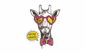 Картинка любовь, очки, жираф, сердечки, бант, бантик, хипстер