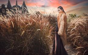 Картинка девушка, закат, шуба, азиатка, высокая трава, пеннисетум