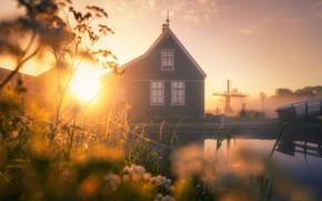 Картинка туман, утро, Нидерланды, ветряная мельница, Зансе-Сханс