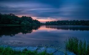 Картинка лес, закат, озеро, Arrowhead Lake, Озеро Эрроухед
