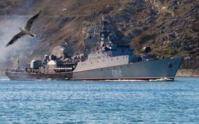 Картинка корабль, противолодочный, малый, Муромец
