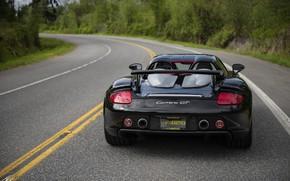 Картинка Porsche, суперкар, вид сзади, Carrera GT
