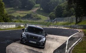 Картинка чёрный, трасса, Porsche, Panamera, Nürburgring, 2020, Nordschleife, предсерийный