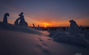 Картинка зима, солнце, снег, деревья, закат, холмы