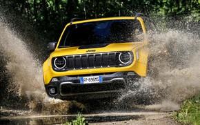 Картинка 2018, Jeep, Trailhawk, Renegade