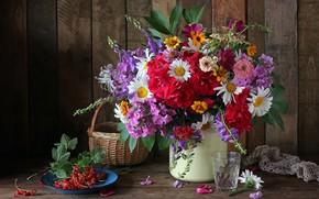 Картинка цветы, корзина, ромашки, букет, смородина, цинии