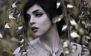 Картинка взгляд, лицо, плющ, Joachim Bergauer, макияж, девушка, стрелки, модель