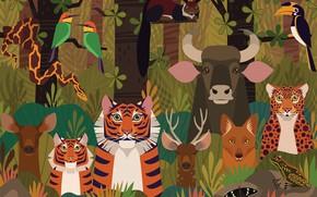 Картинка лес, животные, Bhadra Wildlife Sanctuary, BHADRA TIGER RESERVE, BHADRA FOREST