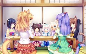 Картинка Стол, Девочки, Чай, Nekopara