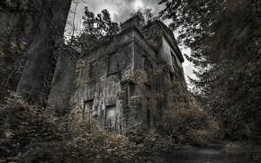 Картинка дом, дерево, мрак
