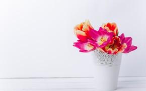 Картинка цветы, букет, тюльпаны, кашпо
