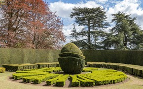 Картинка деревья, парк, фото, Англия, Buckinghamshire, Ascott House Gardens