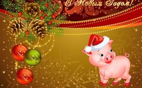 Картинка свинья, шишка, поросенок, календарь на 2019 год