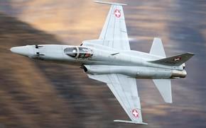 Картинка Истребитель, ВВС Швейцарии, F-5 Tiger II, Northrop F-5F Tiger II