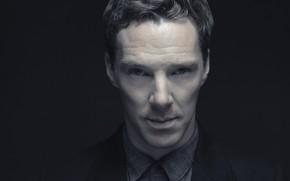 Картинка глаза, взгляд, лицо, портрет, актёр, тёмный фон, Бенедикт Камбербэтч, Benedict Cumberbatch, британский актер