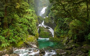 Картинка зелень, лес, деревья, камни, водопад, мох, джунгли, New Zealand, South Island, Mackay Falls