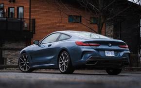 Картинка купе, BMW, 2018, у дома, 8-Series, 2019, бледно-синий, M850i xDrive, 8er, G15