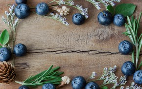 Обои ягоды, черника, fresh, wood, blueberry, голубика, berries