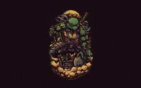 Картинка Минимализм, Стиль, Фон, Черепашки-ниндзя, Art, Style, TMNT, Leonardo, Леонардо, Teenage Mutant Ninja Turtles, Background, Helix, …