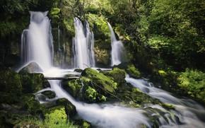 Картинка лес, река, камни, водопад, Испания, каскад, Spain, Каталония, Catalonia, Река Бастарень, Bastareny River, Font de …