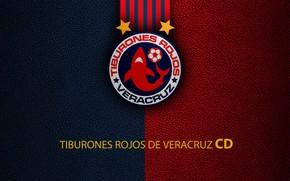 Картинка wallpaper, sport, logo, football, Veracruz