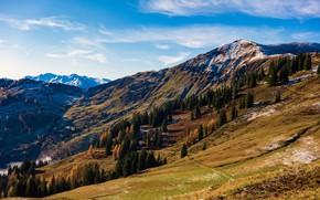 Картинка осень, горы, склоны, Австрия, Hochkönig, Dienten
