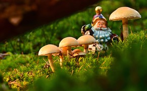 Картинка зелень, природа, игрушка, грибы, мох, борода, бревно, гном, фигурка, старичок