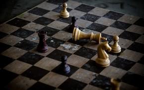 Картинка фон, шахматы, фигуры