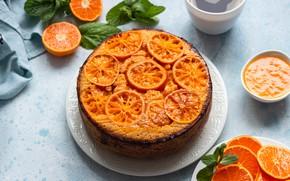 Картинка торт, мандарины, мандариновый