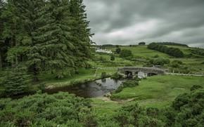 Картинка пейзаж, мост, природа, река