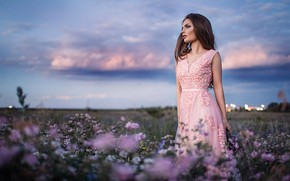 Картинка поле, небо, девушка, цветы, поза, настроение, платье, красивая, Sergey Shatskov