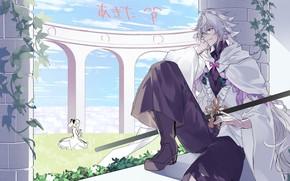 Картинка сидит, наблюдает, Мерлин, Fate / Grand Order, Судьба великая кампания